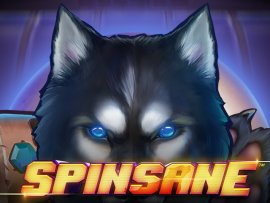 spinsane_not_mobile_sw