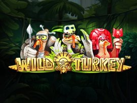 wildturkey_not_mobile_sw